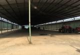 Tổng giám đốc 'siêu' dự án chăn nuôi ở Hà Tĩnh bị bắt