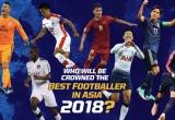 Quang Hải tranh giải với Son Heung Min trong cuộc đua đến quả bóng vàng Châu Á
