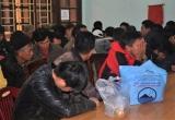 Quảng Trị: Đột kích ổ đá gà dịp Tết dương lịch, bắt giữ trên 60 đối tượng