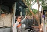 Bình Dương: Công ty TNHH gỗ Tám Hoàn gây ô nhiễm trầm trọng, dân kêu cứu