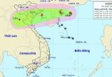 Cấm biển, kiên quyết di dời dân đến nơi an toàn để ứng phó bão số 4