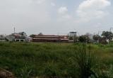 TP.HCM: 1km đường có tới 4 khu đất bị bỏ hoang