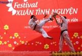 Dàn nghệ sĩ 'quẩy' tưng bừng tại Festival Xuân tình nguyện 2016