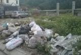 Nghệ An: 'Nhói lòng' khu di chỉ khảo cổ học thành nơi tập kết rác