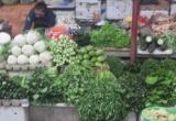 Hà Nội rét đậm kéo dài, giá rau xanh tăng mạnh