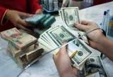 Tỷ giá ngoại tệ ngày 30/9: USD tăng nhẹ