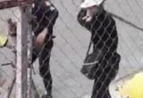 Sốc: Xuất hiện Clip hàng chục bảo vệ 'tung cước' 2 công nhân dã man ở TPHCM