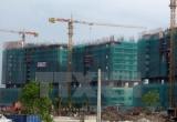 TP Hồ Chí Minh đấu giá đất để thực hiện dự án BT