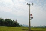 EVN Hà Nội hiện đại hóa lưới điện nông thôn