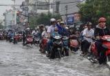 TP HCM chi gần 500 tỉ đồng xóa ngập đường Huỳnh Tấn Phát