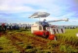 Quảng Ngãi: Phân bổ 394,2 tỷ đồng xây dựng nông thôn mới