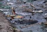 Chùm ảnh - Liệu có cứu nổi các con sông 'chết' ở Hà Nội?