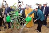 Chủ tịch Quốc hội phát động Tết trồng cây tại Hòa Bình
