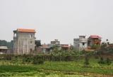 Hà Nội yêu cầu báo cáo vi phạm sử dụng đất nông nghiệp trước 31/10
