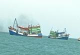 Bắt hai tàu giã cào tận diệt nguồn lợi thủy sản