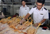 Xử lý vi phạm về an toàn thực phẩm: Nhằm vào những vụ quy mô lớn, gây tổn hại nghiêm trọng