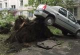 Giông bão tấn công Moscow: 12 người chết, 125 người bị thương