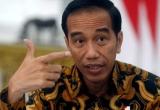 Tổng thống Indonesia cho phép bắn kẻ vận chuyển ma túy chống đối