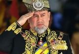 Thoái cả ngai vàng để cưới vợ hoa hậu, cựu vương Malaysia ly hôn sau 2 tháng?