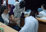 Bộ Y tế: Dừng việc lấy mẫu xét nghiệm chẩn đoán sán dây lợn