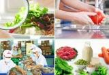 Tăng cường quản lý chất lượng, an toàn thực phẩm nông lâm thủy sản
