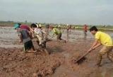 Dồn điền đổi thửa ở Hà Nội: Sai phạm đã rõ, xử lý còn… chờ