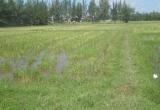 Nhiều sai phạm trong quản lý sử dụng đất bị phát lộ tại Hà Tĩnh