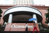 Đang xét xử đại án tham nhũng tại Agribank chi nhánh Nam Hà Nội