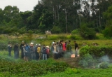 Thanh Hóa: Phát hiện xác chết phân hủy trên ruộng rau muống