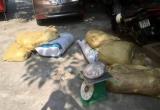 Hà Nội: Phát hiện xe khách chở hơn nửa tấn thịt động vật bốc mùi hôi thối