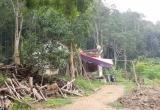 Nghệ An: Tự ý xây nhà, chiếm đất rừng người khác