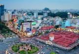 Bản tin Sài Gòn Plus: Độc đáo trồng rau sạch trên rác