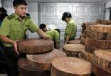 Hà Giang: Khởi tố, bắt tạm giam chủ xưởng chế biến gỗ cất giấu thớt nghiến không rõ nguồn gốc