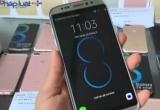 Bản tin Kinh tế Plus: Galaxy S8 vừa ra mắt, hàng giả tràn lan trên thị trường