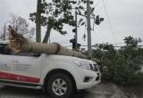Xe đoàn kiểm tra, khắc phục thiệt hại bão số 2 bị lật, hai người tử vong