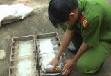 Lâm Đồng: Bắt quả tang đối tượng vận chuyển trái phép số lượng lớn bình gas không rõ nguồn gốc