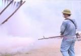 Hà Nội: Phun hóa chất và diệt bọ gậy chưa triệt để