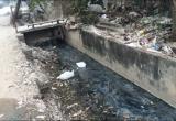 """""""Ngập"""" trong ô nhiễm tại làng nghề Triều Khúc"""