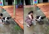 Bản tin Facebook ngày 23/9: Cộng đồng mạng phẫn nộ với clip chặt chân chó