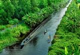 Radio Yêu thương Plus số 166: Cà phê võng và sông nước Cà Mau