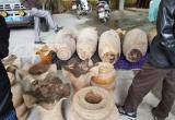 Vụ dân thắng kiện Chi cục trưởng Kiểm lâm tỉnh Tuyên Quang: Tiếp tục đòi bồi thường vì tài sản bị hư hại
