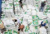 Audio Tài chính: Giá gạo xuất khẩu của Việt Nam ngày càng được cải thiện