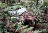 Lạng Sơn: Phát hiện thi thể người đàn ông đang phân hủy trong căn lều hoang