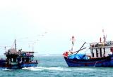 Kiên Giang: Giải cứu thành công 12 thanh niên bị 'cò' ép làm ngư phủ
