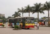 Nên trợ giá xe buýt mỗi năm hàng ngàn tỷ?