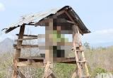 Thanh Hóa: Cán bộ xã tử vong trong tư thế treo cổ trên núi
