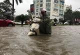 Nghệ Anh: TP Vinh nhiều tuyến phố biến thành sông sau mưa lớn