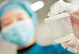 Gia đình đưa đi lưu trữ tinh trùng khẩn cấp sau khi nam thanh niên này tự tử