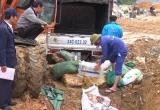 Lào Cai: Tiêu hủy gần 800 tạ thực phẩm đông lạnh đang phân hủy