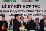 Những cú bắt tay với đại gia tỷ USD của NutiFood